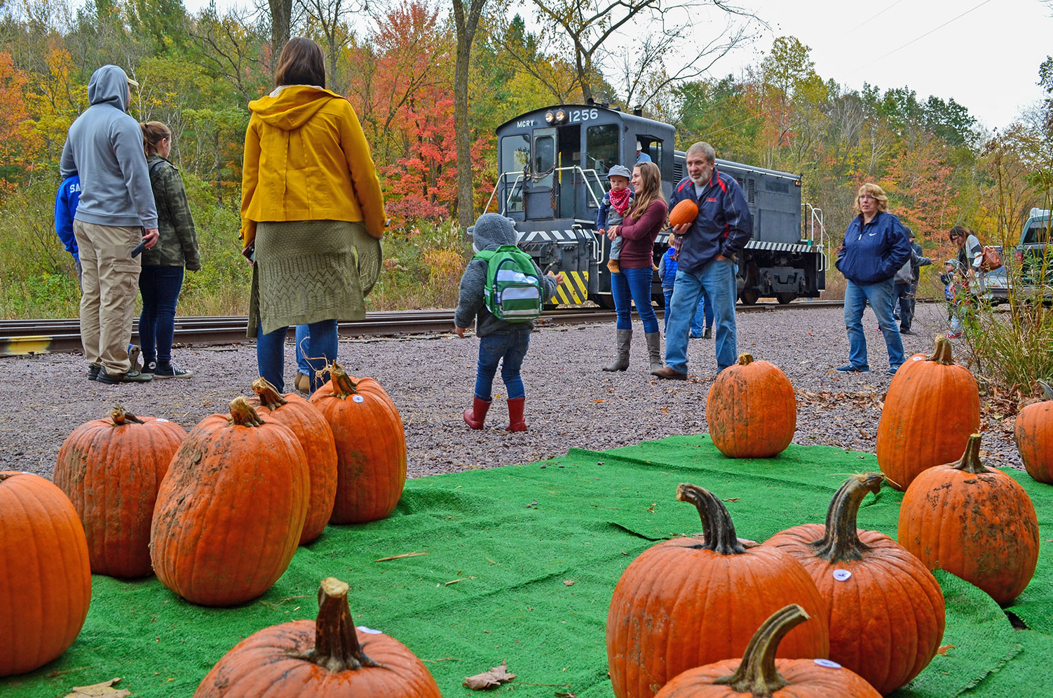 Pumpkins in foreground with passengers and locomotive in background